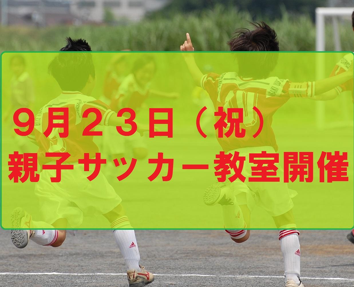 DSC_0015_st